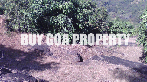 Land for sale in Mochemad - Vengurla