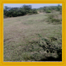 14 Acre Property for sale